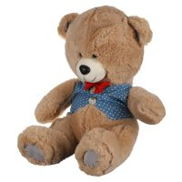 عروسک خرس (دخترپسر) لباسدار
